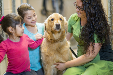 Pet-Adoption-450×300
